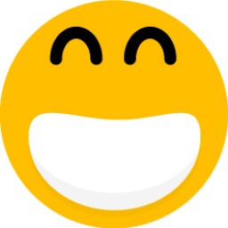 Seanau-Flat-Smiley-Smiley-11 копия