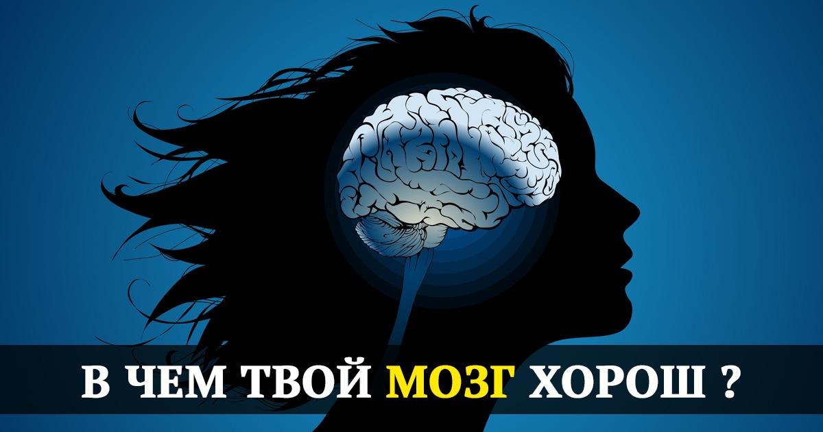 mozg2
